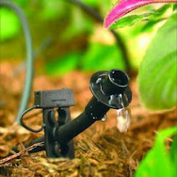 Our Federal Heights Irrigation Specialists Do Drip Irrigation Systems